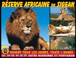 RESERVE AFRICAINE ADULTE (SIGEAN) - Parc animalier