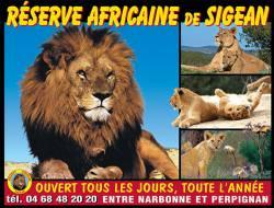 RESERVE AFRICAINE ENFANT (4-14 ans) (SIGEAN) - Parc animalier