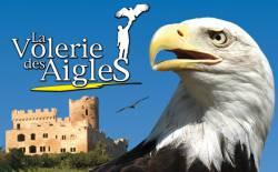 VOLERIE DES AIGLES ADULTE (KINTZHEIM) - Parc animalier