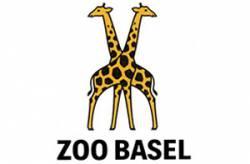 Zoo de Bâle Enfant (Suisse)
