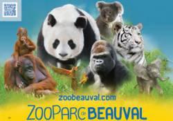 Zooparc de Beauval Adulte (Saint-Aignan sur Cher)