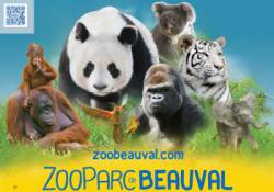 ZOOPARC DE BEAUVAL ENFANT (3-10 ans) (SAINT-AIGNAN SUR CHER) - Parc Animalier